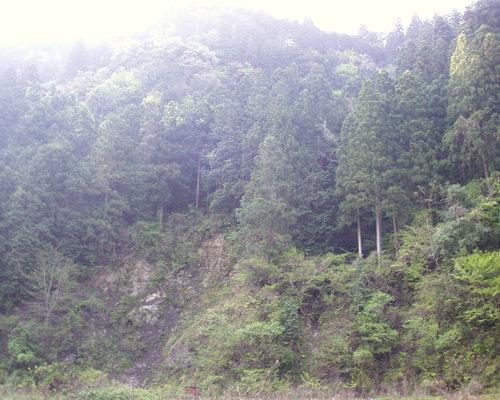 Pic00001_2